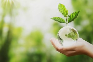 iMasons Contribute to Industry Sustainability Action Plan – APAC